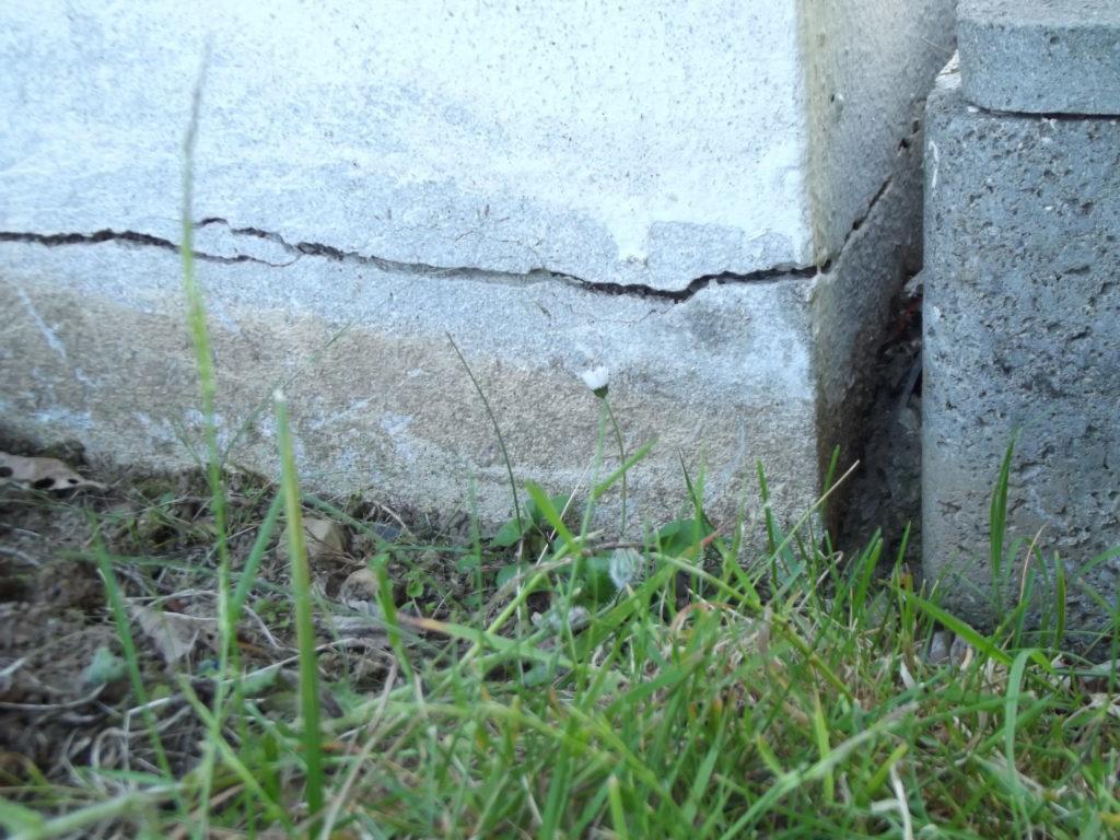 zoom sur une fissure sur un mur en parpaing